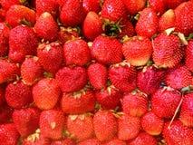 natutal新鲜的草莓 免版税图库摄影