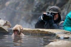 Natuurfotograaf, Aardfotograaf stock fotografie