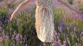 Natuurgebieden voor het ontspannen het kleine meisje gaat door bloemgebied bij zonsondergang en raakt zacht bloemen stock video