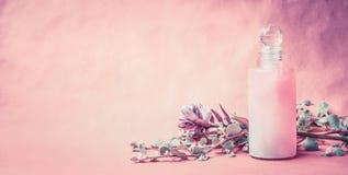 Natuurlijk cosmetische product in fles met kruiden en bloemen op roze achtergrond, vooraanzicht, banner, plaats voor tekst Gezond stock foto