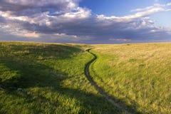 Natuurlijk de Heuvel Openbaar Park Calgary Alberta Springtime van de Weideneus royalty-vrije stock afbeeldingen
