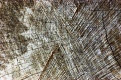 Natuurlijk Doorstaan Grey Tree Stump Cut Texture, Grote Gedetailleerde Oude Oude Gray Lumber Background Horizontal Macro-Close-up Royalty-vrije Stock Afbeeldingen