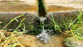 Natuurlijk drinkwater van bergstroom Steenachtige landelijke fontein in het bos met vers glashelder water stock footage