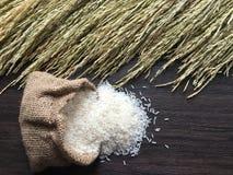 Natuurlijk en gemalen rijst Stock Afbeeldingen