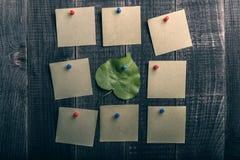 Natuurlijk groen blad onder de groep stickers Royalty-vrije Stock Fotografie