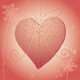 Natuurlijk hart Stock Afbeelding
