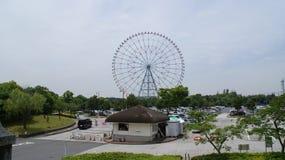 Natuurlijk het behoudspark van Tokyo Kasai Rinkai Royalty-vrije Stock Foto's