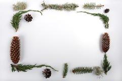 Natuurlijk Kerstmiskader Royalty-vrije Stock Afbeeldingen