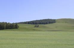 Natuurlijk landschap Stock Afbeelding