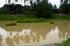 Natuurlijk Landschap in Bulatukan-rivier, Nieuwe Clarin, Bansalan, Davao del Sur, Filippijnen Royalty-vrije Stock Foto