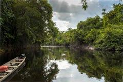 Natuurlijk Landschap in de Wildernis van Amazonië, Venezuela stock foto's