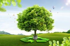 Natuurlijk landschap. ecologisch concept Royalty-vrije Stock Afbeeldingen