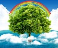 Natuurlijk landschap. ecologisch concept Stock Afbeelding