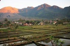 Natuurlijk Landschap in Garut, West-Java - Indonesië stock afbeeldingen