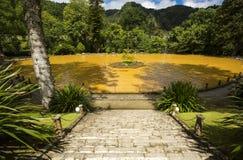 Natuurlijk landschapspark Terra Nostra, plaats van grote schoonheid, pools van de hete lentes, ideaal om van aard, eiland van Sao stock afbeeldingen