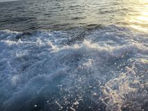 Natuurlijk levensstijlwater van de Oceaan Stock Afbeelding