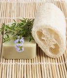 Natuurlijk loef de aromatische zeep van de spons wlth thyme Stock Afbeelding