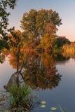 Natuurlijk meerlandschap tijdens de herfst/dalingsseizoen met kleurrijke bomen stock foto