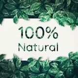 100% natuurlijk met groen blad vriendschappelijk, ecomilieu, concepten Royalty-vrije Stock Foto's