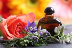 Natuurlijk parfum royalty-vrije stock foto's