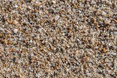 Natuurlijk rond gemaakte grint op zee kust, de achtergrond t van het aardstrand Stock Afbeelding