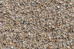 Natuurlijk rond gemaakte grint op zee kust, de achtergrond t van het aardstrand Royalty-vrije Stock Foto's