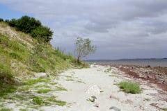 Natuurlijk strand bij Baltisch Se Royalty-vrije Stock Afbeeldingen