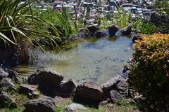 Natuurlijk water in stad Royalty-vrije Stock Fotografie