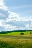 Natuurlijke achtergrond royalty-vrije stock afbeelding
