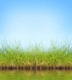 Natuurlijke achtergrond Stock Afbeelding