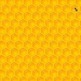 Natuurlijke Achtergrond met Honingraten Stock Afbeeldingen