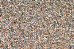Natuurlijke achtergrond - overzeese shells Stock Afbeelding