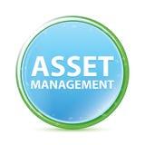 Natuurlijke aqua cyaan blauwe ronde knoop van Asset Management stock illustratie