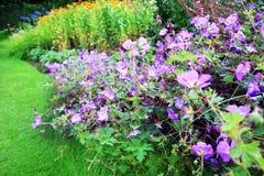 Natuurlijke artistieke, bloemenachtergrond Stock Foto