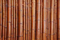 Natuurlijke bamboeachtergrond Stock Foto's
