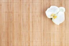 Natuurlijke bamboeachtergrond met orchidea royalty-vrije stock foto's