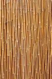 Natuurlijke bamboetextuur Stock Foto's