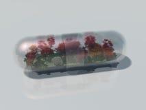 Natuurlijke Behandelings Ecologische Geneeskunde Stock Fotografie