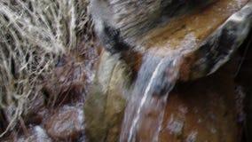 Natuurlijke bron van mineraal curatief water stock videobeelden