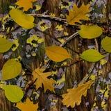 Natuurlijke Camouflage stock foto's
