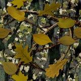 Natuurlijke Camouflage royalty-vrije stock afbeeldingen