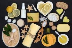 Natuurlijke de Behandelingsproducten van Skincare en van de Schoonheid royalty-vrije stock afbeelding