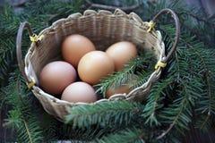 Natuurlijke de kleureneieren van Pasen in het handvat op plattelander Stock Afbeeldingen