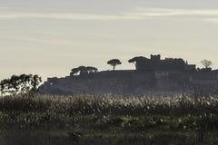 Natuurlijke de reservelandschappen van Diacciabotrona Royalty-vrije Stock Afbeelding