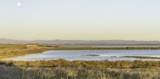 Natuurlijke de reservelandschappen van Diacciabotrona Royalty-vrije Stock Foto's