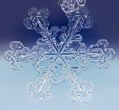 Natuurlijke de wintersneeuwvlok royalty-vrije stock afbeeldingen