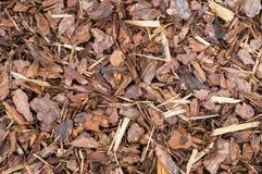 Natuurlijke die schors als grond wordt gebruikt die voor muls behandelen stock foto