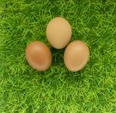 Natuurlijke eieren op een groen gazon, een achtergrond voor Pasen Royalty-vrije Stock Afbeeldingen
