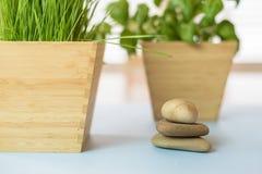 Natuurlijke elementenachtergrond voor gezondheid/kuuroord/wellness comcept Royalty-vrije Stock Fotografie