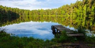 Natuurlijke en realxing moerasmening stock foto's